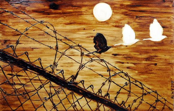 dove border fence