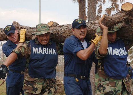 050909-N-4374S-008_-_U.S._Navy_sailors_and_Mexican_marines_cleaning_up_hurricane_debris.jpg