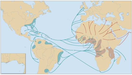 slave trade map.jpg